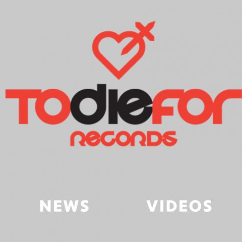 TDF Records - Record Label Website Design
